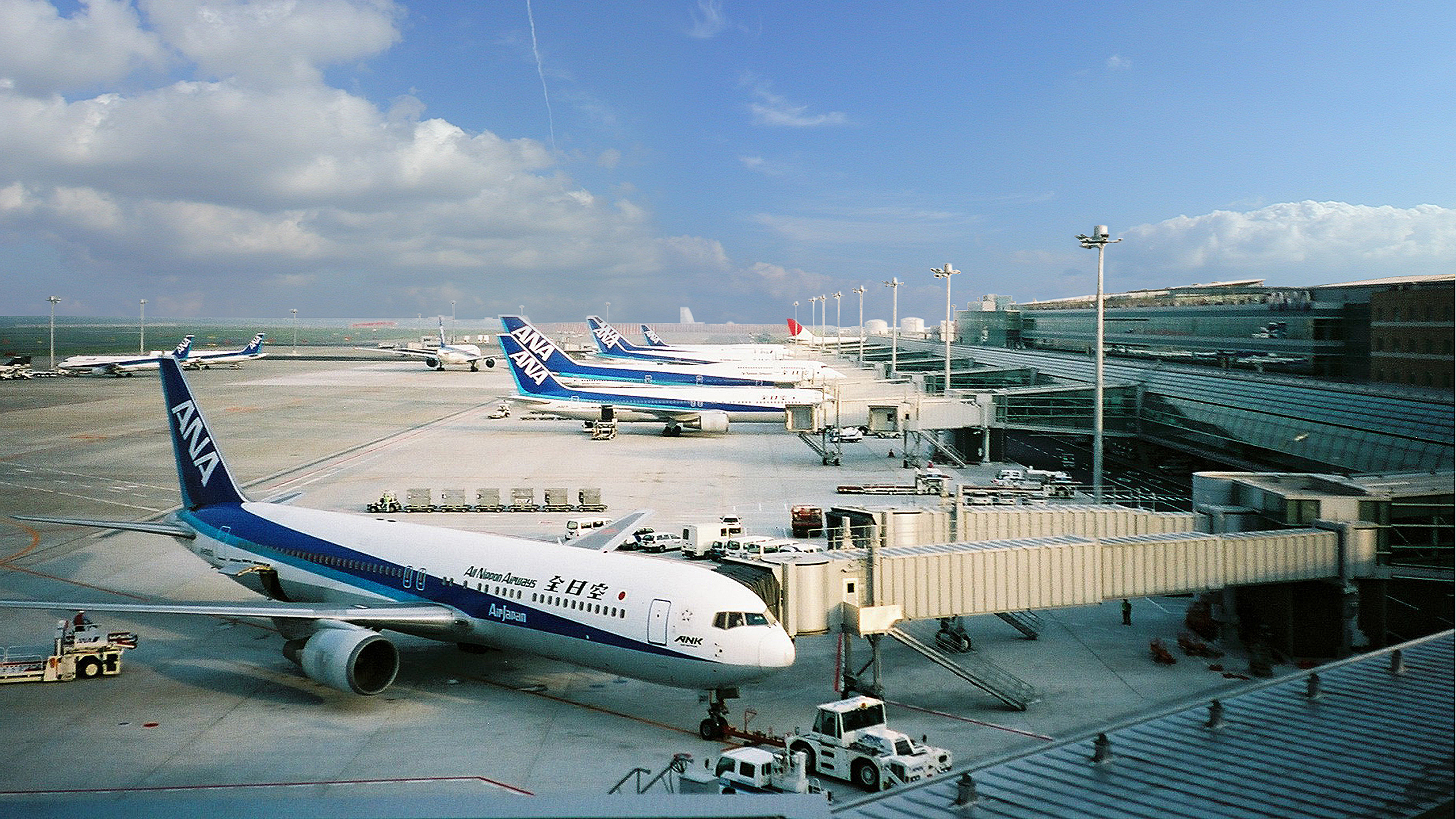 Haneda Passenger Terminal 2 / image 9