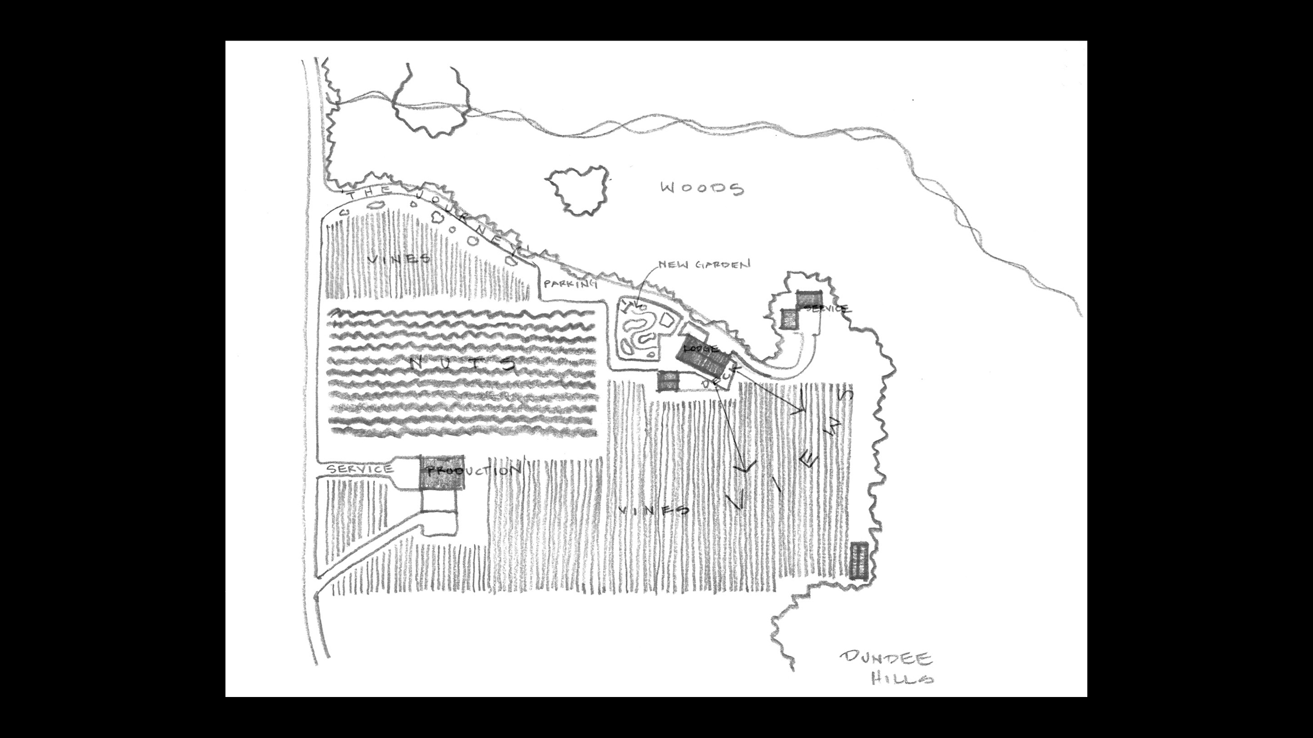 Dundee Winery Master Plan Study / image 1